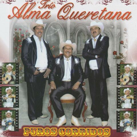 Trío Alma Queretana