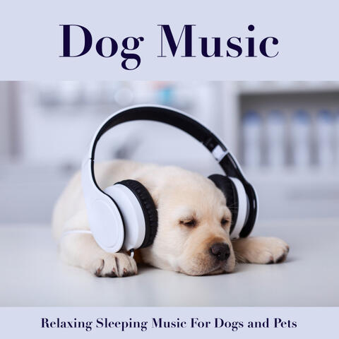 Dog Music & Sleeping Music For Dogs & Music For Your Dog