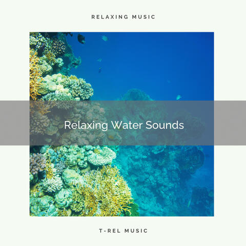 ! ! ! ! ! ! Relaxing Water Sounds album art