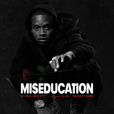 Miseducation album art