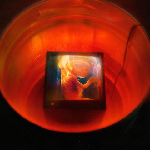 HARAM! album art