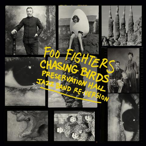 Chasing Birds album art