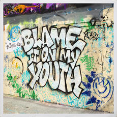 Blame It On My Youth - blink-182