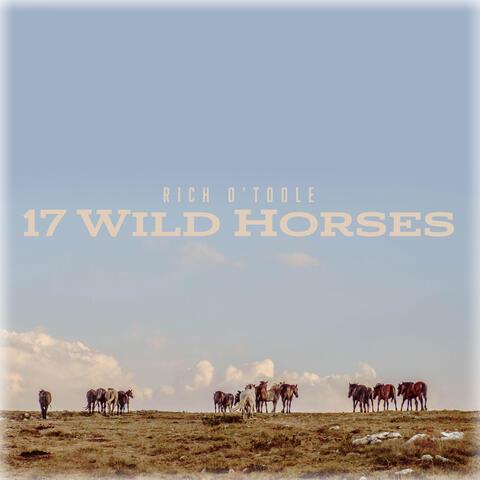 17 Wild Horses album art