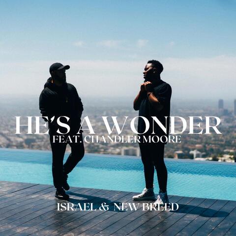 He's a Wonder (Studio Single) album art