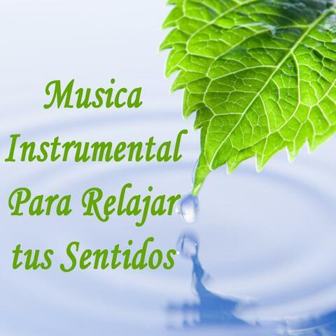 Musica Instrumental Para Relajar Tus Sentidos