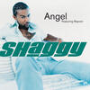 Angel - Shaggy
