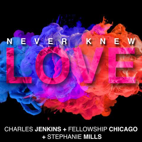 Never Knew Love album art