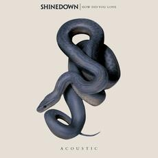 How Did You Love - Shinedown