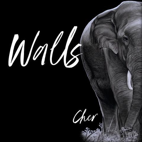 Walls album art