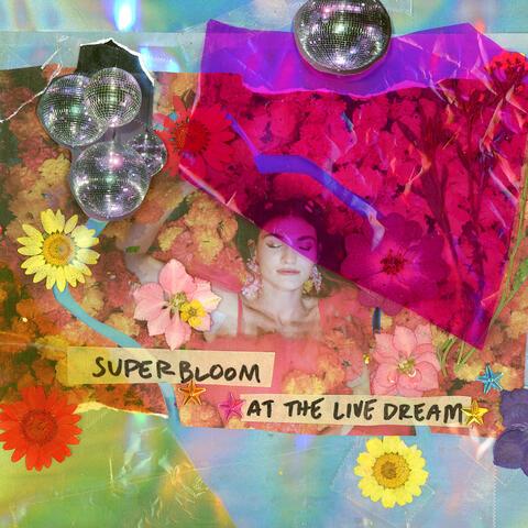 SUPERBLOOM at the Live Dream album art