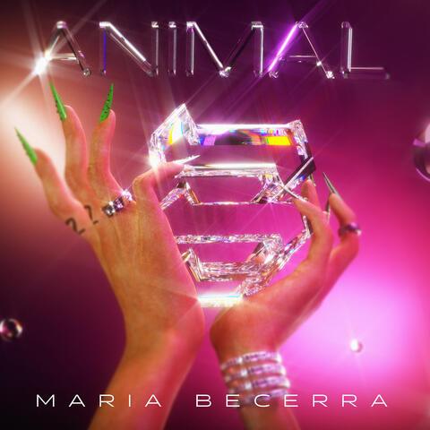 Animal album art
