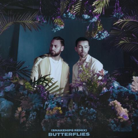 Butterflies album art