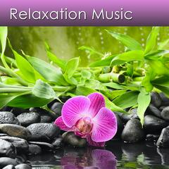 Listen to the Music for Relaxing Deeply and Reducing Stress Now