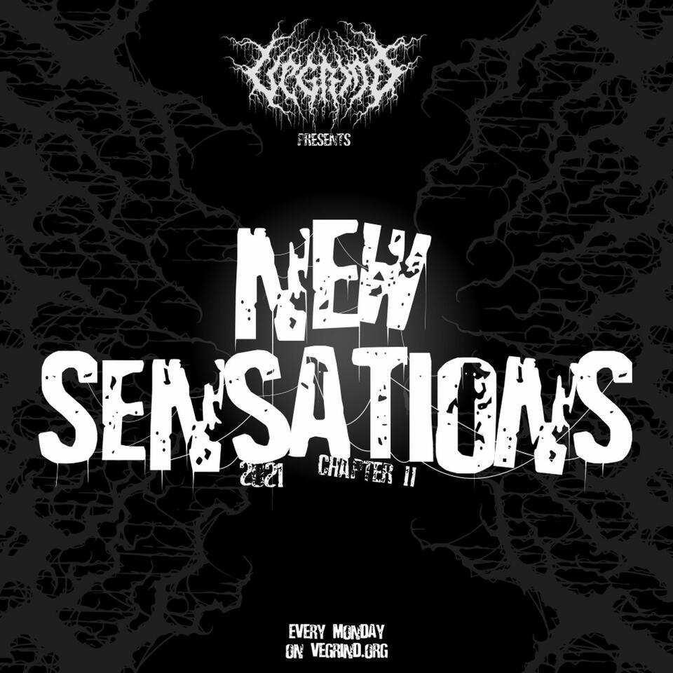 NEW SENSATIONS 2021-chapter II
