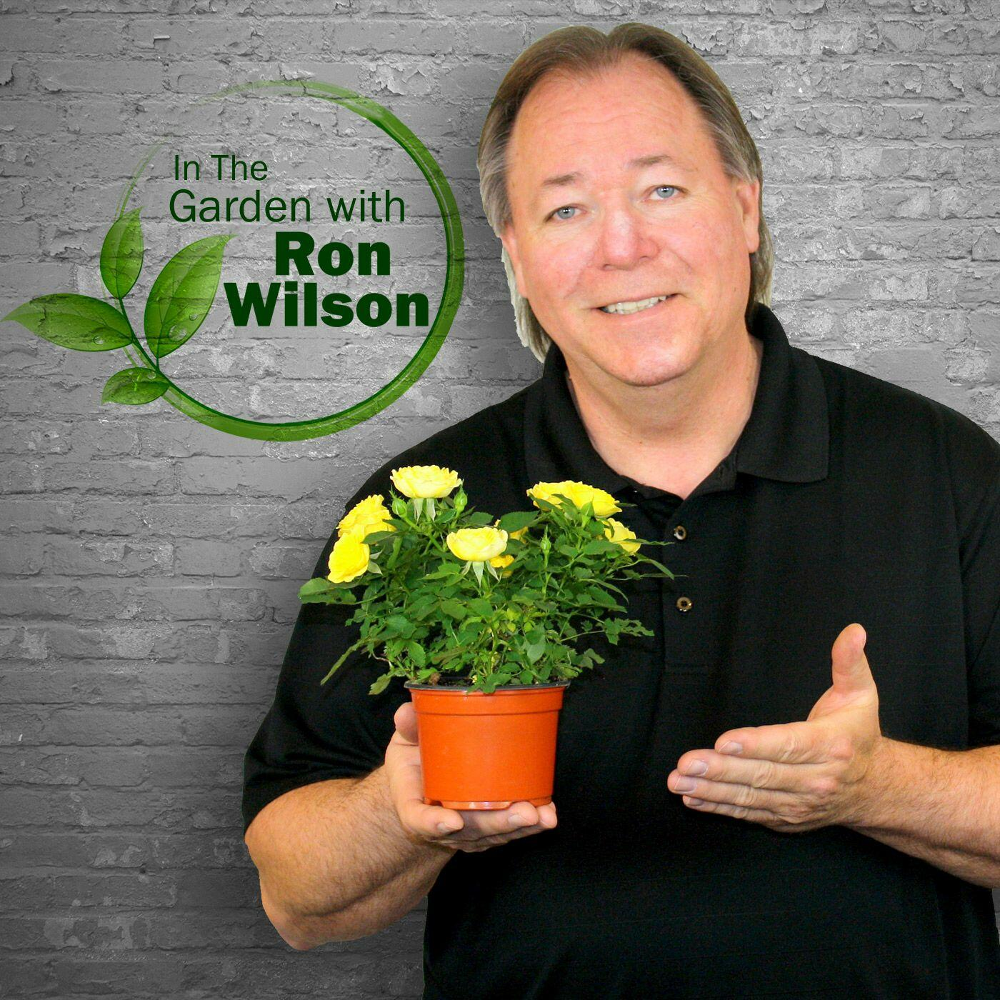 In The Garden with Ron Wilson
