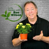 In the Garden with Ron Wilson - 7-21-2018