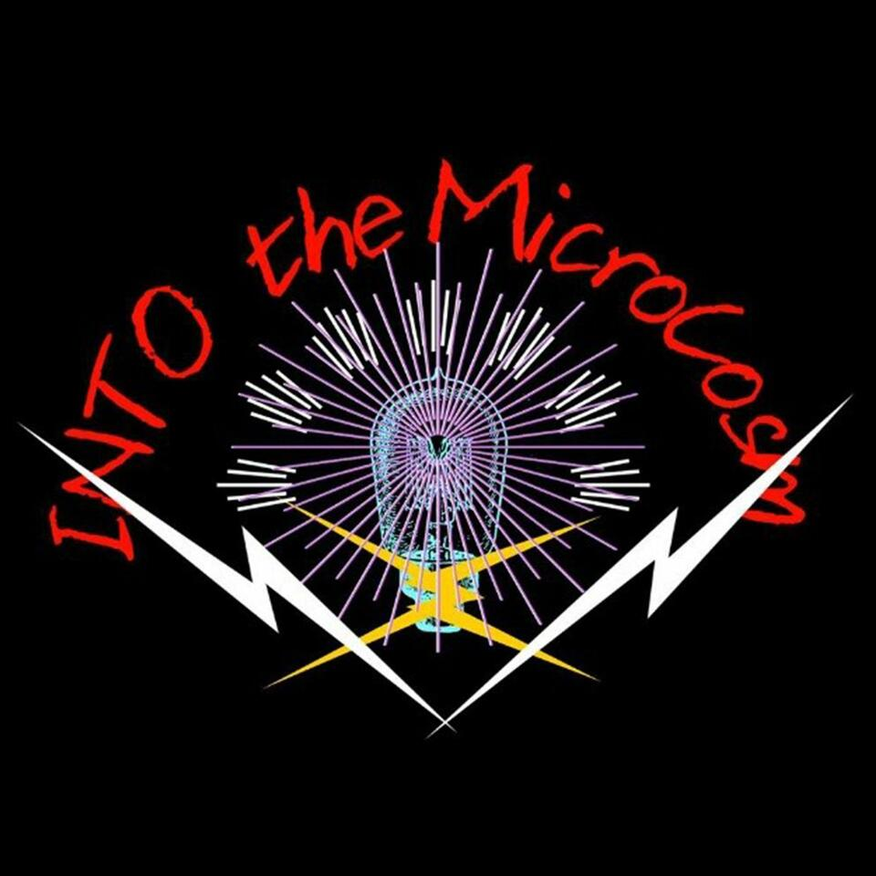 Into the Microcosm