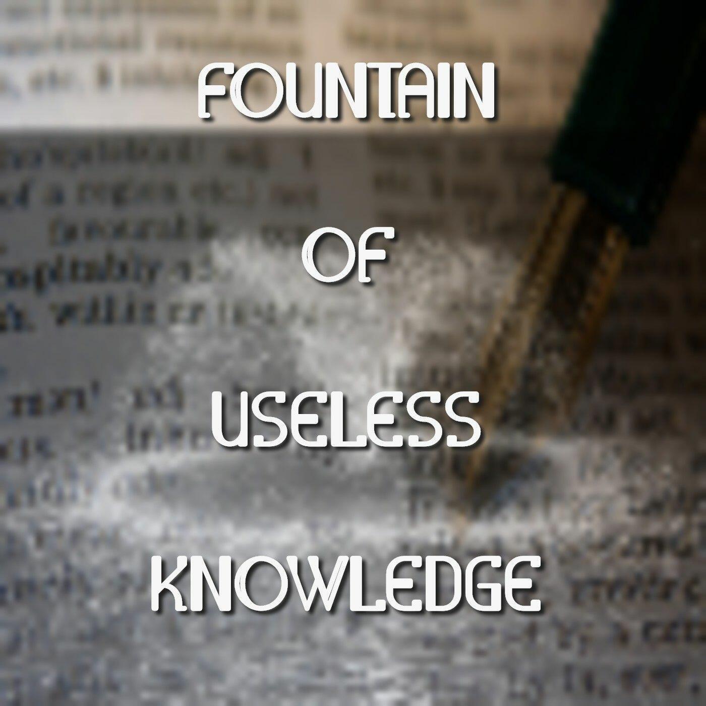 Fountain Of Useless Knowledge