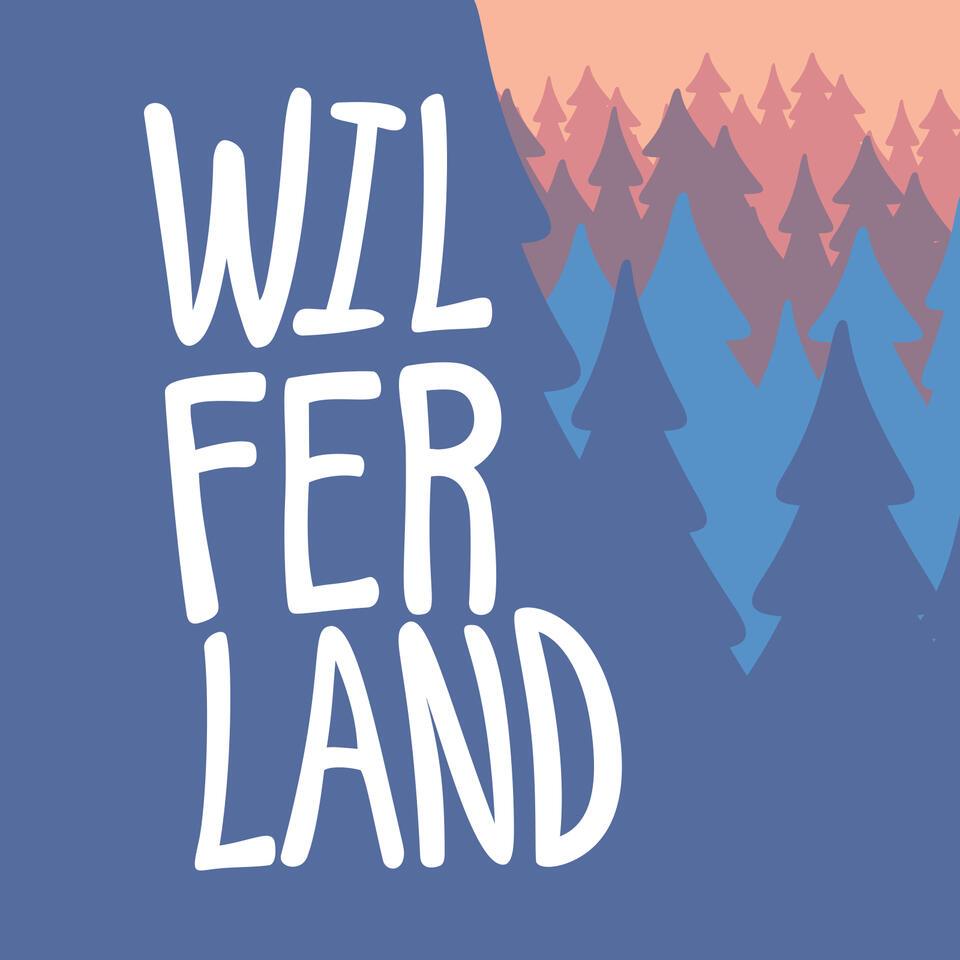 WILFERLAND con Wilson Paulino y Fernando Acevedo