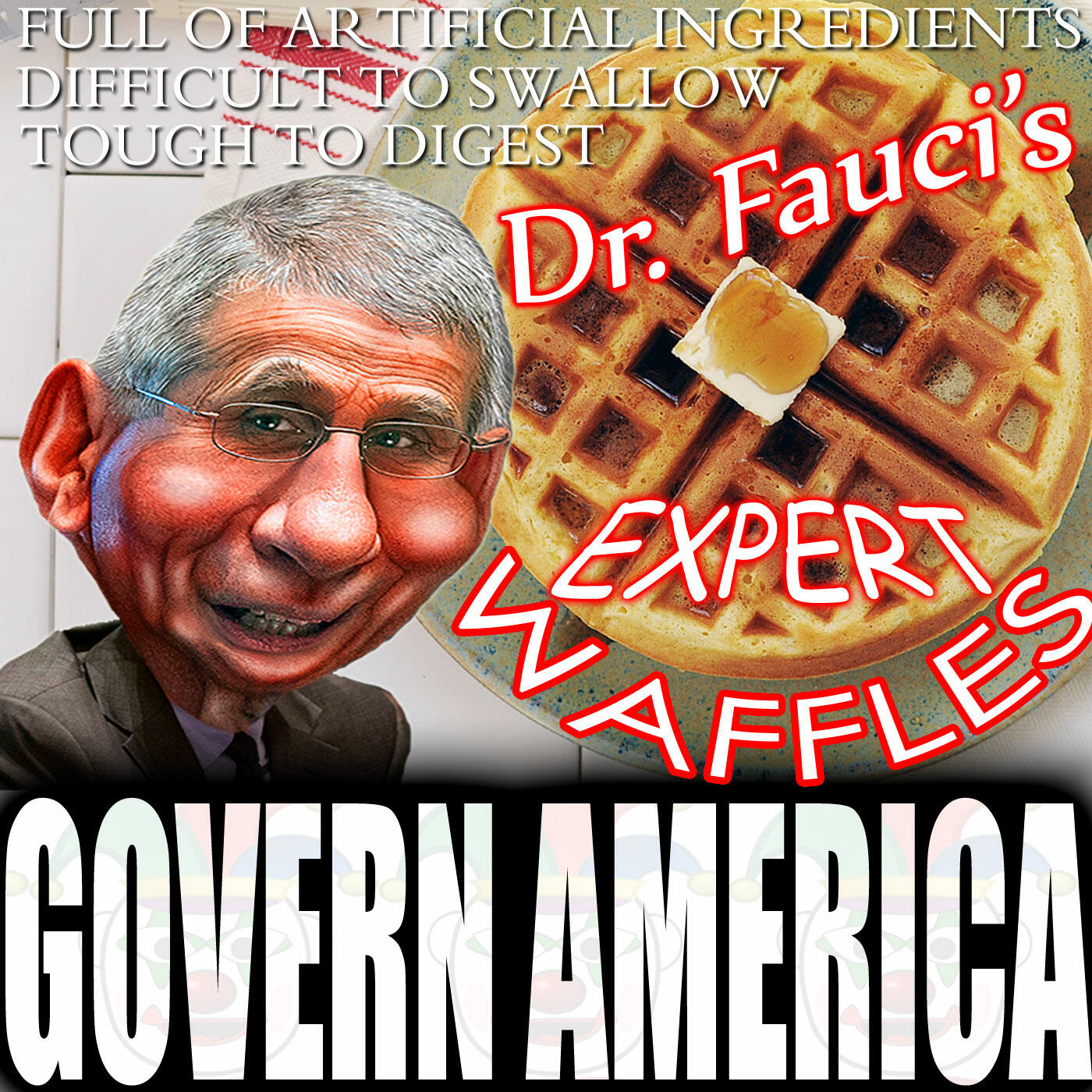 Govern America