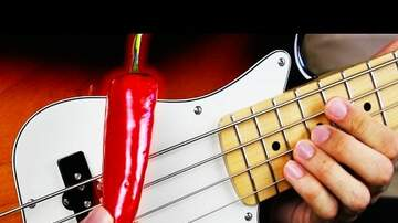 Jack Daniel - Bass Player Thumps RHCP With Actual Chili Pepper!