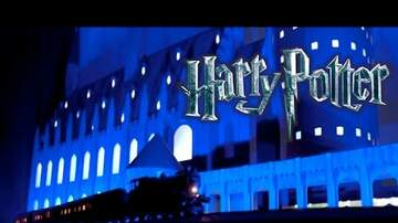Edison - WATCH: Amazing Harry Potter Christmas Light Show