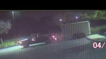 Shelley Wade - 8,000 Disneyland Tickets Stolen In Truck Heist