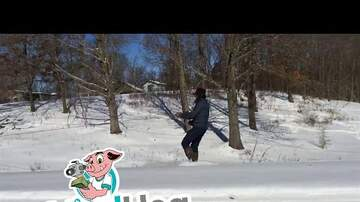 image for Amish Skier Being Pulled by a Horse and Buggy (Viral)