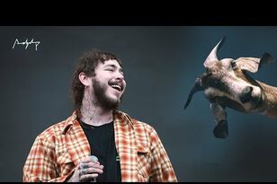 Post Malone 'Rockstar' vs Goats Video Meme