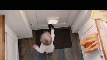 Dave Roberts - Toddler Disposes Household Items Through Cat Door and It's Hilarious