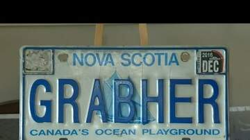 Shaileen - Canada Says HELL NO to This License Plate