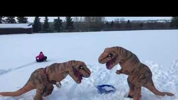 Jim Bodine - T-Rex Goes Sledding