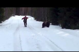 Man Scares A Huge Attacking Bear