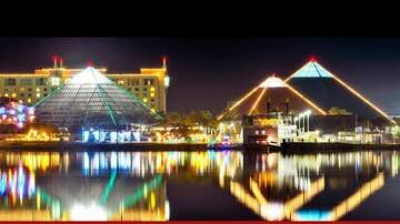 - Listen To Win Free 4 Packs Of Tickets To Moody Gardens Festival Of Lights
