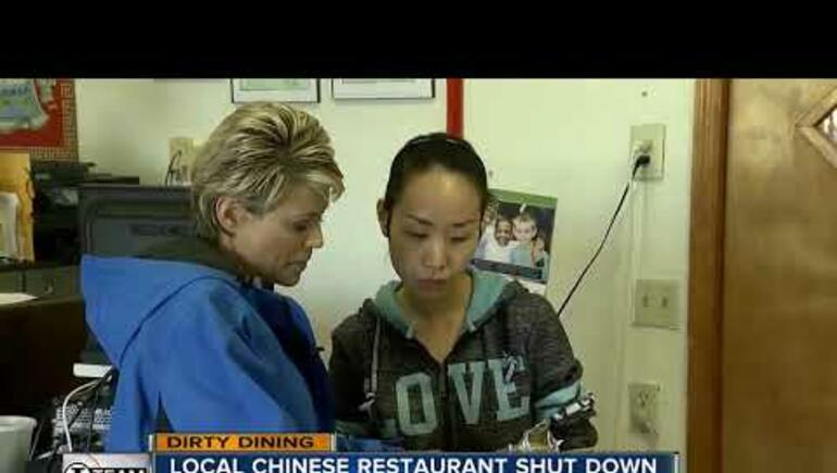 Popular Clearwater Chinese Restaurant Shut Down Due to 130+ Roaches