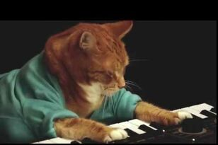 RIP Keyboard Cat - A Tribute