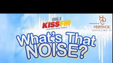 What's That Noise? - The Noise