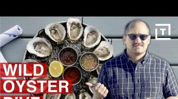 Corey - Who's Eating Oysters Today?