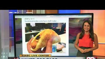 Intern Sami - Introducing The New Naked Egg Taco From Taco Bell