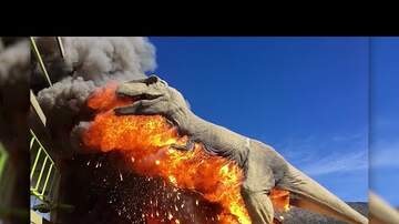 Going Viral - T-Rex Bursts Into Flames