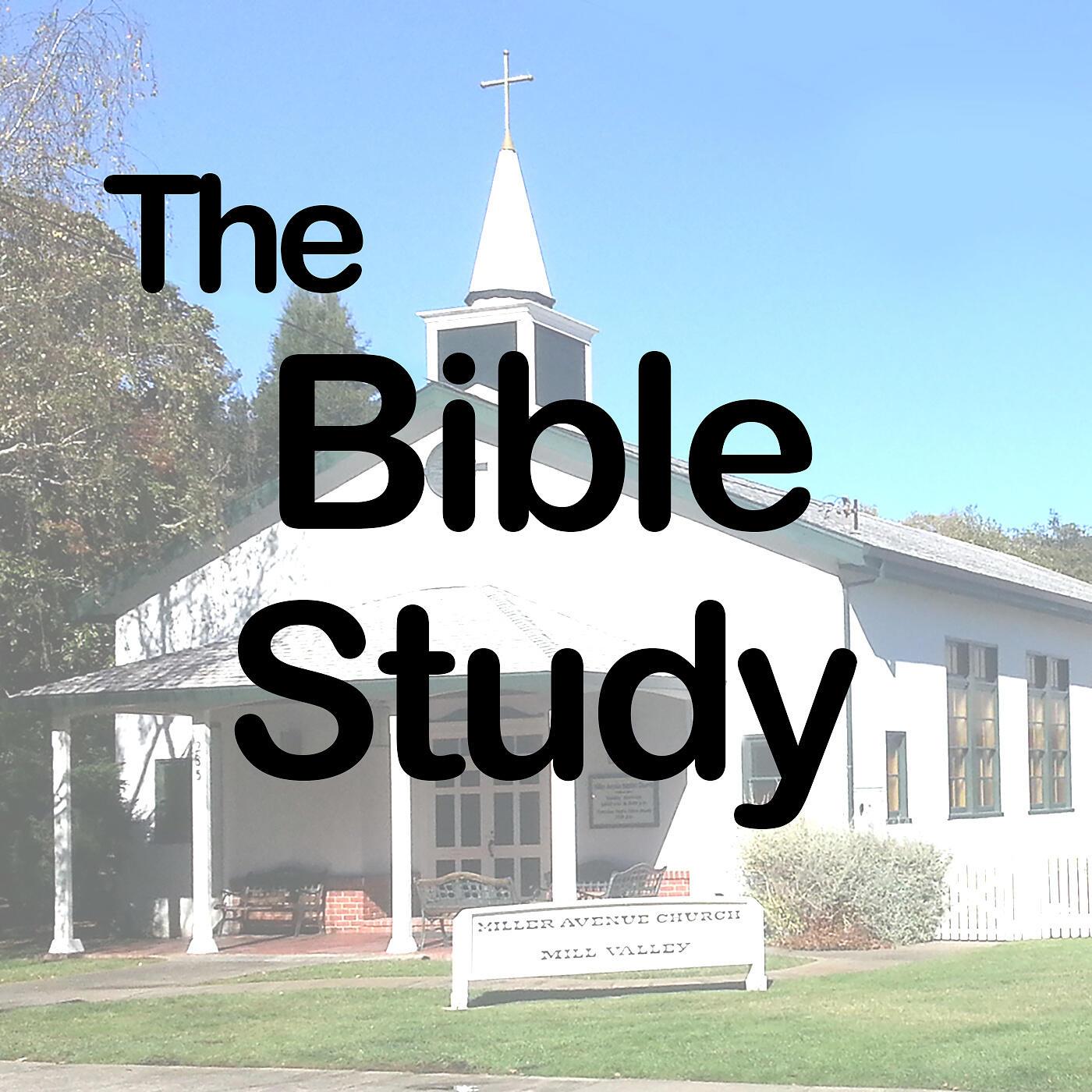 The Bible Study Program