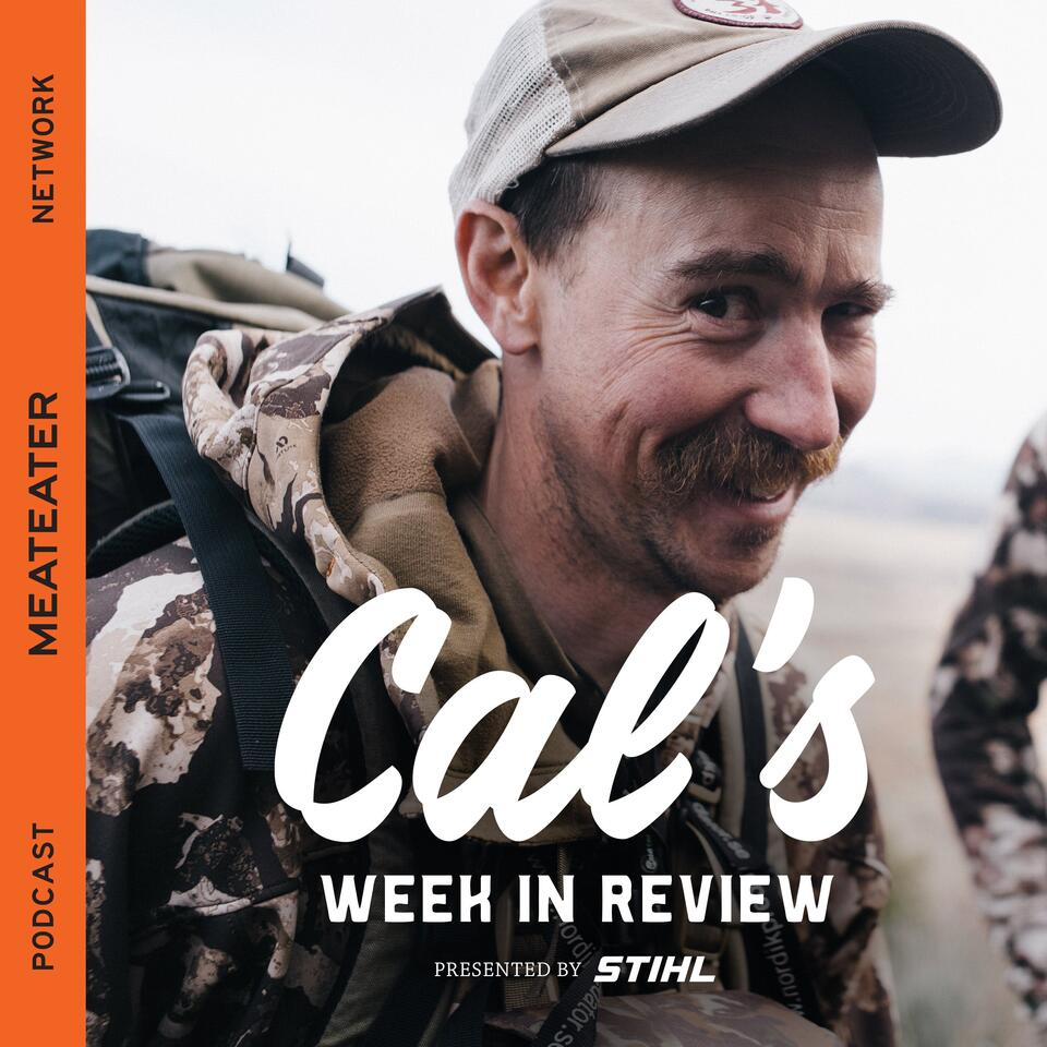 Cal's Week in Review