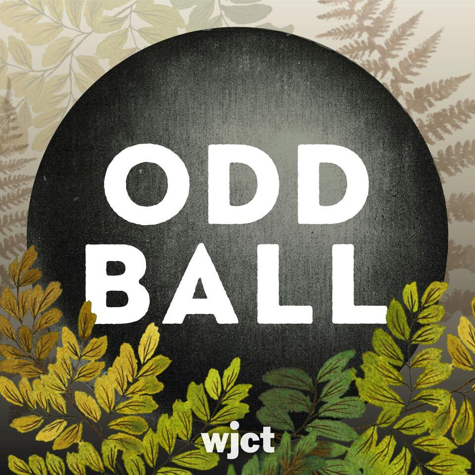 Odd Ball Podcast