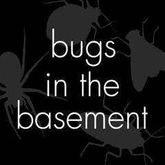 Bugs In The Basement