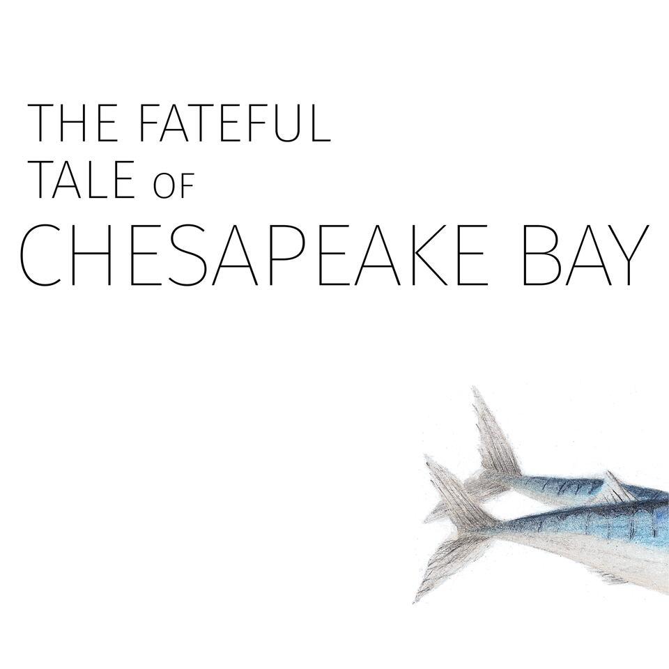 The Fateful Tale of Chesapeake Bay