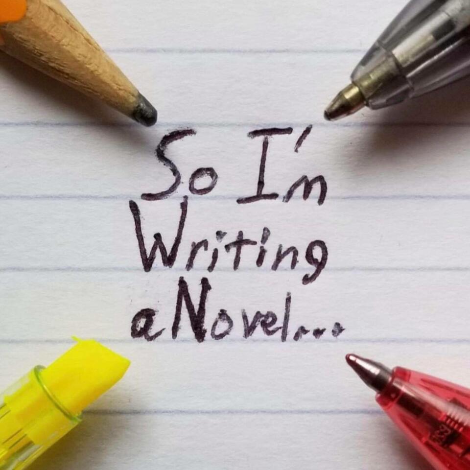 So I'm Writing a Novel...