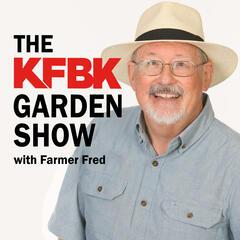 """Chickens and Bees!"" with Chicken Consultant/Beekeeper Cherie Sintes-Glover. - KFBK Garden Show"