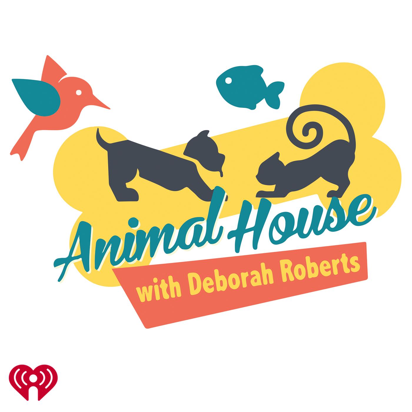 Animal House w/Deborah Roberts
