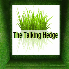 The Talking Hedge